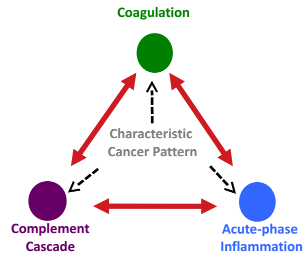 Coagulation, Complement Cascade, Acute Phase Inflammation