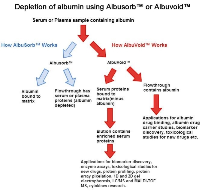 Albumin Depletion And Low Abundance Protein