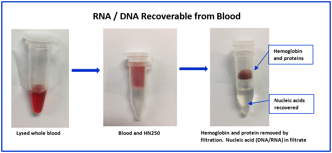 RNA/DNS Recoverable from Blood