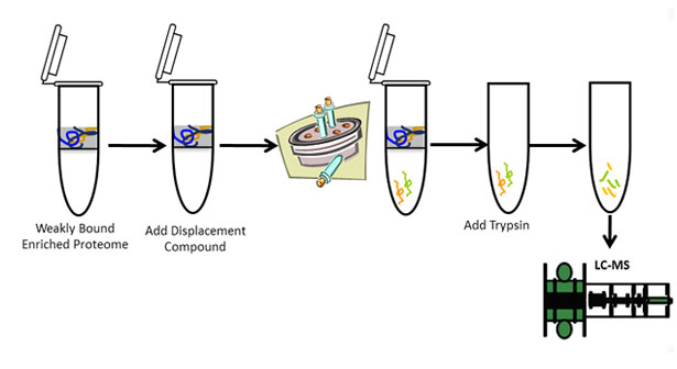 Molecule Tiny Homes Llc: Chemical Proteomics [CCDP™]
