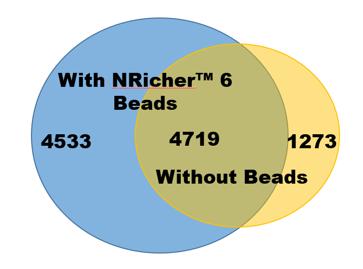 With NRicher™ 6 Beads and Without
